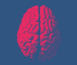 Curso de Evaluación Neuropsicológica. Modalidad online. image